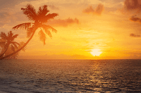 Hapuna Sunset Hawaii Charles Michael Brotman