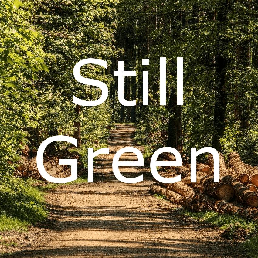 Still Green: komponiert für Gitarre von Andreas Hövelmann