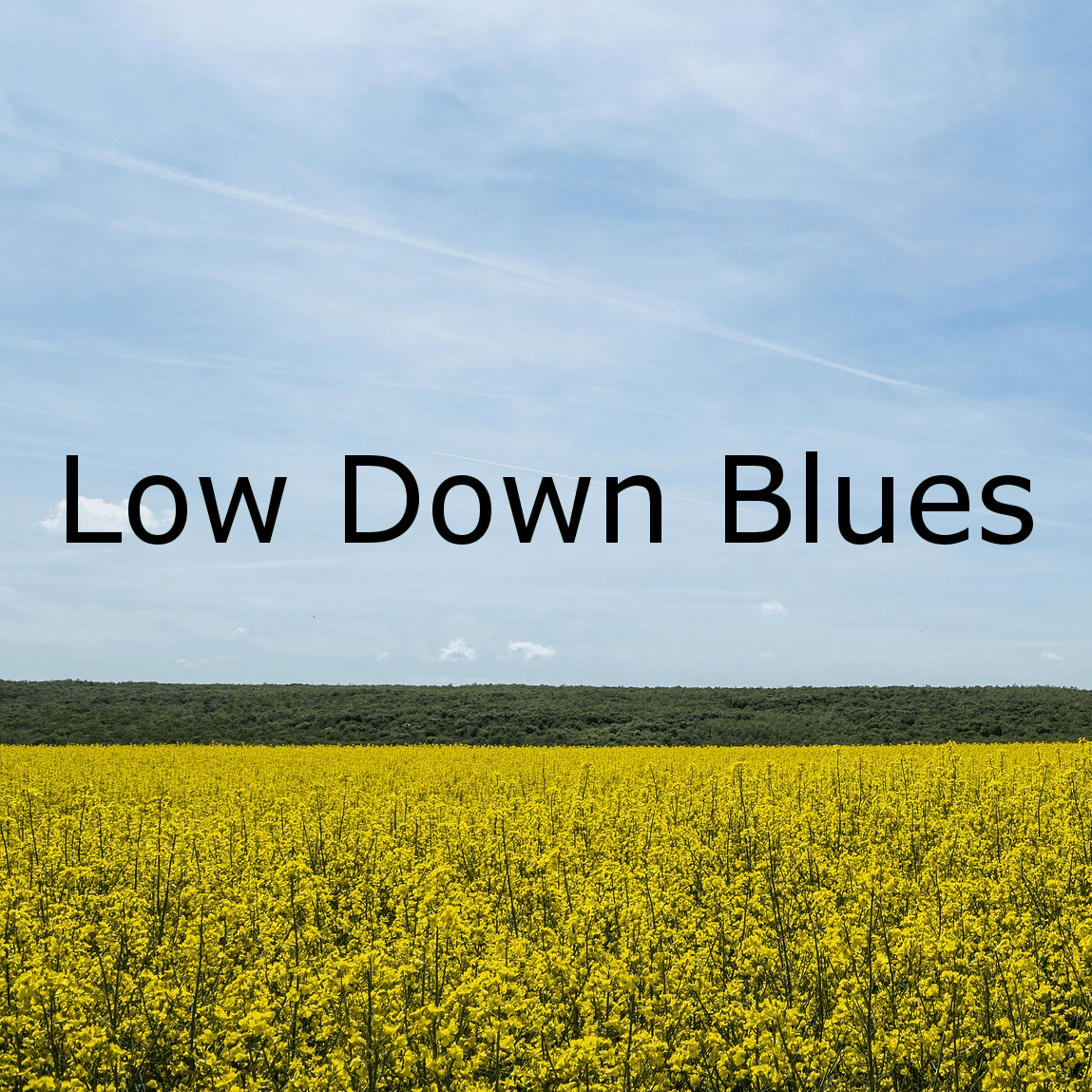 Low Down Blues - Fingerpicking-Blues mit open tuning